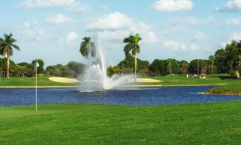 palm spring golf VISA V2 Golf Club review