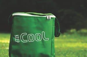 best golf cooler bag